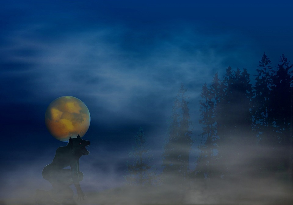 werewolf fantasy abstract scary howl surreal nature moon werewolf werewolf werewolf werewolf werewolf