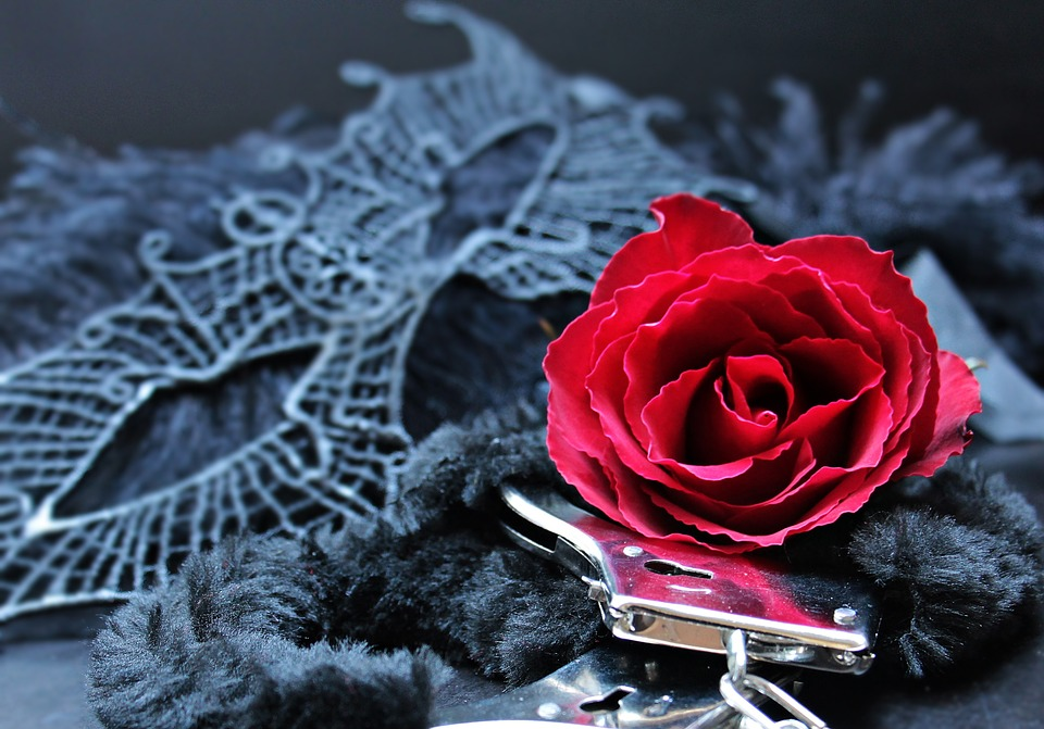 mask, handcuffs, roses